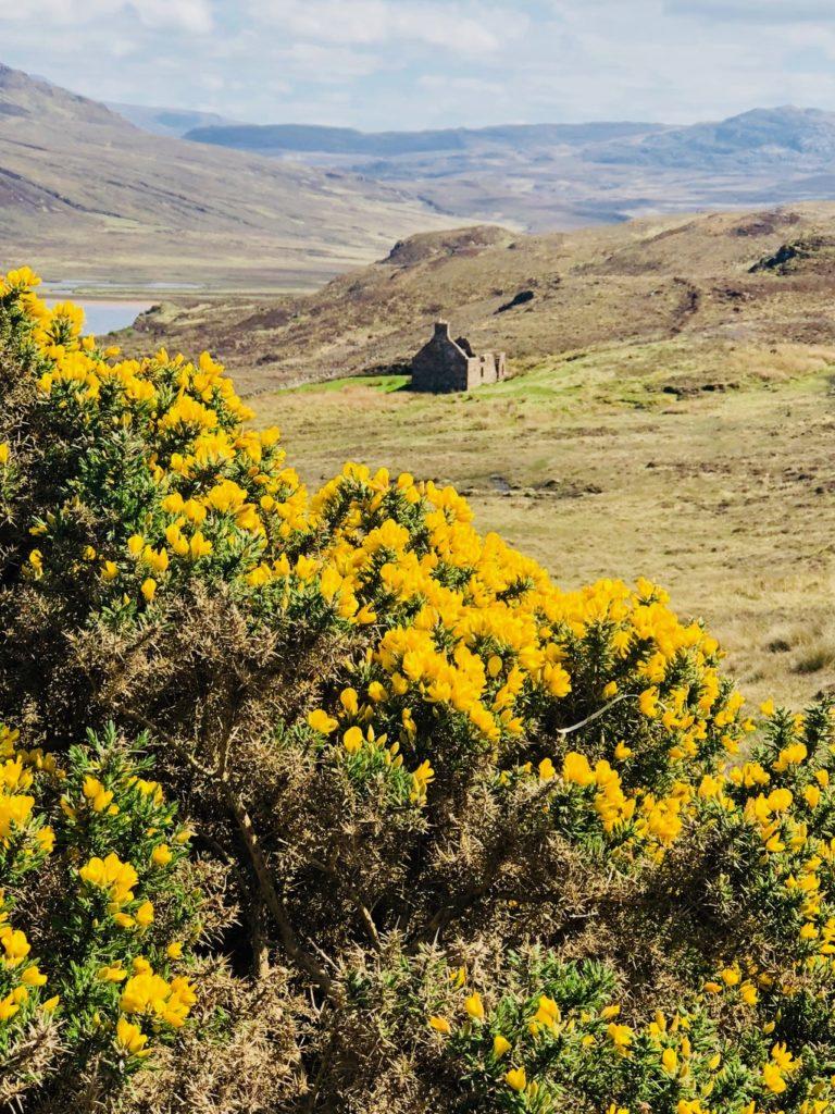 scotland's outer hebrides