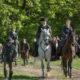 Outlander Cast: Season 5 Teaser Breakdown and New York Comic Con