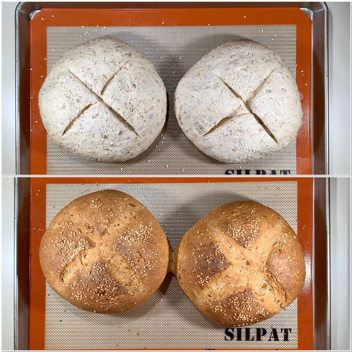 Before and after baking multigrain sourdough bread collage